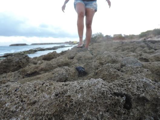 A walk on the rocks at dawn