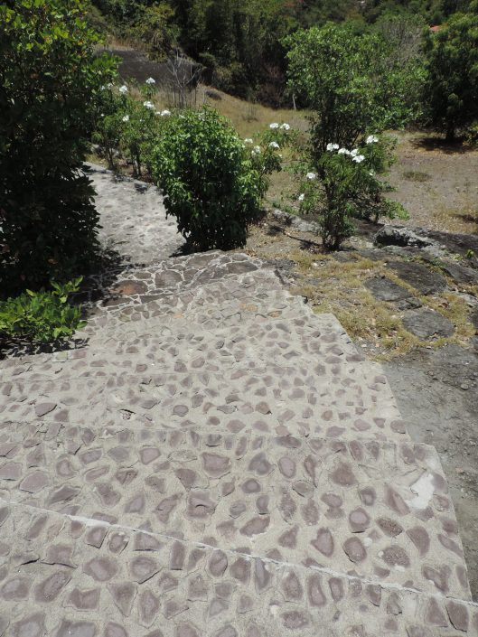 Pathway to back yard