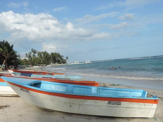 Guayacaná