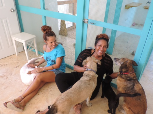 Doggy Hotel and Collares Rojo Shelter