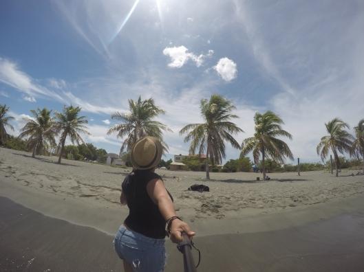 Palm trees at Playa Salinas